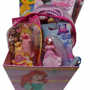 The Gotta Have Disney Princess Gift Basket - Perfect for Easter, Christmas, Birthdays, Get Well, and Other Occasion!